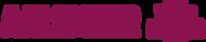 Logo van Team Aalsmeervoorelkaar